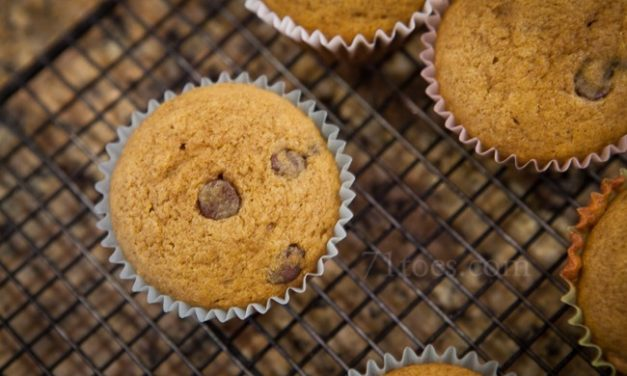 Wendy's Pumpkin Chocolate Chip Muffins